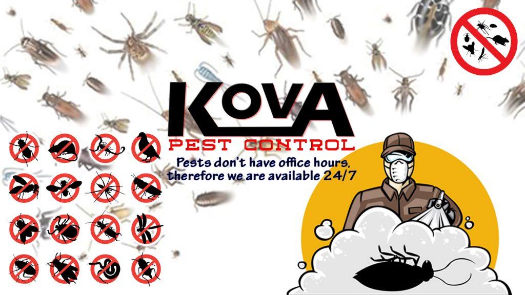 KOVA Cover